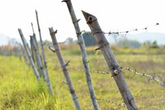 Barbed wire fence. Rusty old barb wire surrounding farming property Stock Images