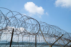 Barbed-wire fence Royalty Free Stock Photography