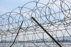 Barbed-wire fence Stock Photos