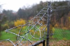 Barbed wire on a fence Stock Photography