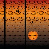 Barbed wire fence, silhouette against the background of an orange sunset, stock illustration