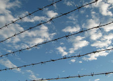 Barbed wire fence2. Barbed wire fence on sky background Royalty Free Stock Photography