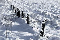 Barbed wire fence with snow Royalty Free Stock Photography