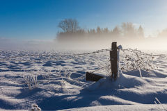 Barbed wire fence with snow covered ground Stock Photos