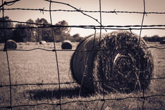 Barbed Wire Fence with Straw Bale Royalty Free Stock Photo