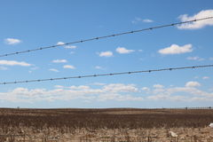 Barbed wire fence,Swartland, Western Cape, South Africa Stock Photos