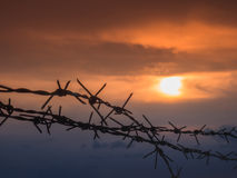 Barbed wire fence with Twilight sky to feel Silent and lonely and want freedom.  Royalty Free Stock Images