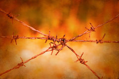 Barbed wire fence on vibrant vintage background Royalty Free Stock Photography