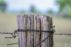 Old barbed wire fence and wood post on farm Stock Photos