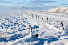 Barbed wire fence winter landscape Stock Image