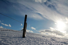 Barbed wire fence in winter Stock Image