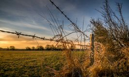 A barbed wire fence with wooden post. In the countryside Royalty Free Stock Image