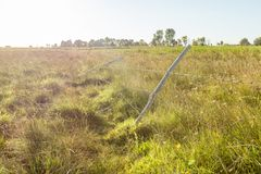 A barbed wire fence with wooden post. With meadow on background in the countryside royalty free stock images