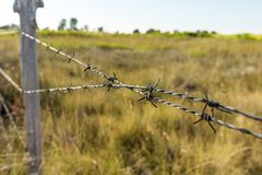 A barbed wire fence with wooden post. With meadow on background in the countryside royalty free stock photos