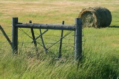 Barbed wire fenceline. Old barbed wire fenceline with hay bale Stock Photos