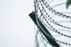 Barbed wire Stock Image