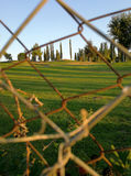 Barbed wire in the field Royalty Free Stock Image