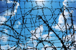 Barbed wire and freedom Royalty Free Stock Photography