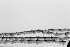 Barbed wire4. Barbed wire,  frost, open air Royalty Free Stock Photos