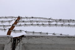 Barbed wire2. Barbed wire,  frost, open air Royalty Free Stock Photos