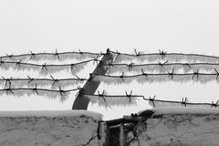 Barbed wire1. Barbed wire,  frost, open air Stock Photo