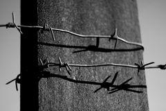 Barbed Wire on a gray background BW Stock Photos