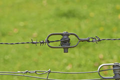 Barbed wire on green background Royalty Free Stock Image