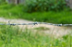Barbed wire with green grass Stock Photos