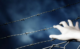 Barbed Wire and a hand Stock Photo