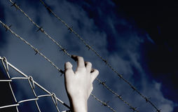 Barbed Wire and a hand Stock Image