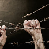 Barbed wire with hands. Old rusty barbed wire with hand on the dark background Stock Photography