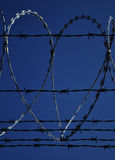 Barbed wire heart Stock Images
