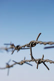 Barbed wire in horizontal background.  Stock Image