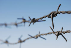 Barbed wire in horizontal background.  Royalty Free Stock Photography