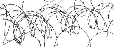Barbed wire. Isolated on white background Royalty Free Stock Image