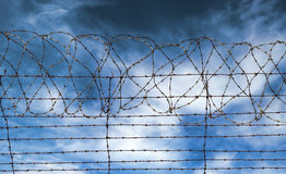 Barbed wire jail or gaol fence Royalty Free Stock Images