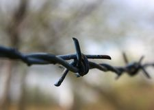 Barbed wire knot Stock Photos