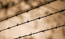 Barbed wire lines and background blurred with other barriers Stock Images