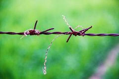 Barbed Wire Macro Shot stock images