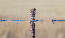Barbed wire on a metal stand, against a background of dried grass Stock Photo