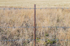 Barbed wire on a metal stand, against a background of dried grass Stock Photography