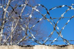 Barbed wire against the blue sky. royalty free stock photo