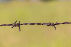 Barbed wire. Old barbed wire, Blur background Royalty Free Stock Photography