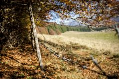 Barbed wire in outdoor grazing Stock Images