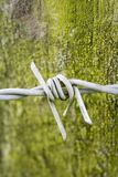 Barbed wire over green grunge. Single wire barb st against the moss and lichen encrusted fence post Stock Image