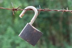 Barbed wire with padlock stock photography