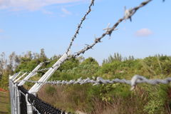 Barbed wire Stock Photography