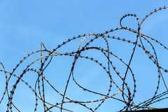 Barbed wire. A plot of land is covered with barbed wire Royalty Free Stock Photography
