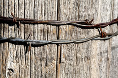 Barbed wire on post Stock Photography