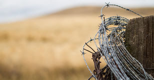 Barbed Wire Post Stock Images